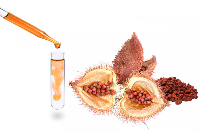 annatto seeds, bixin, norbixin, natural color, natural food colorants, bioconcolors