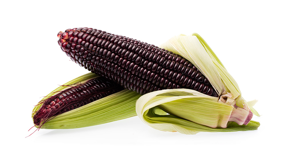 Bioconcolors, Purple corn, colouring foodstuff, natural colors, anthocyanin